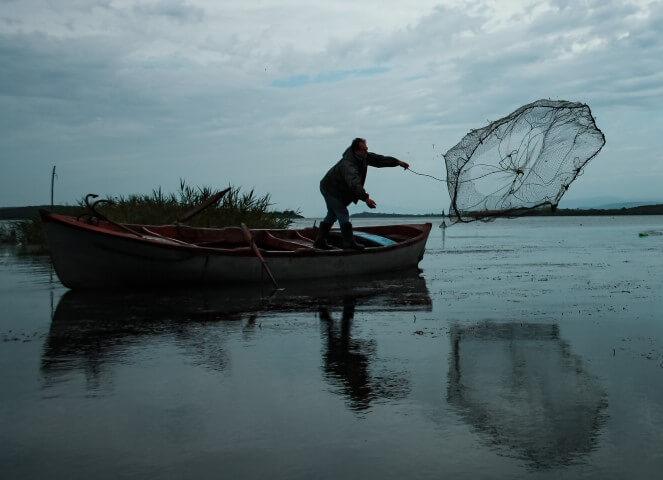 casting a fishing net
